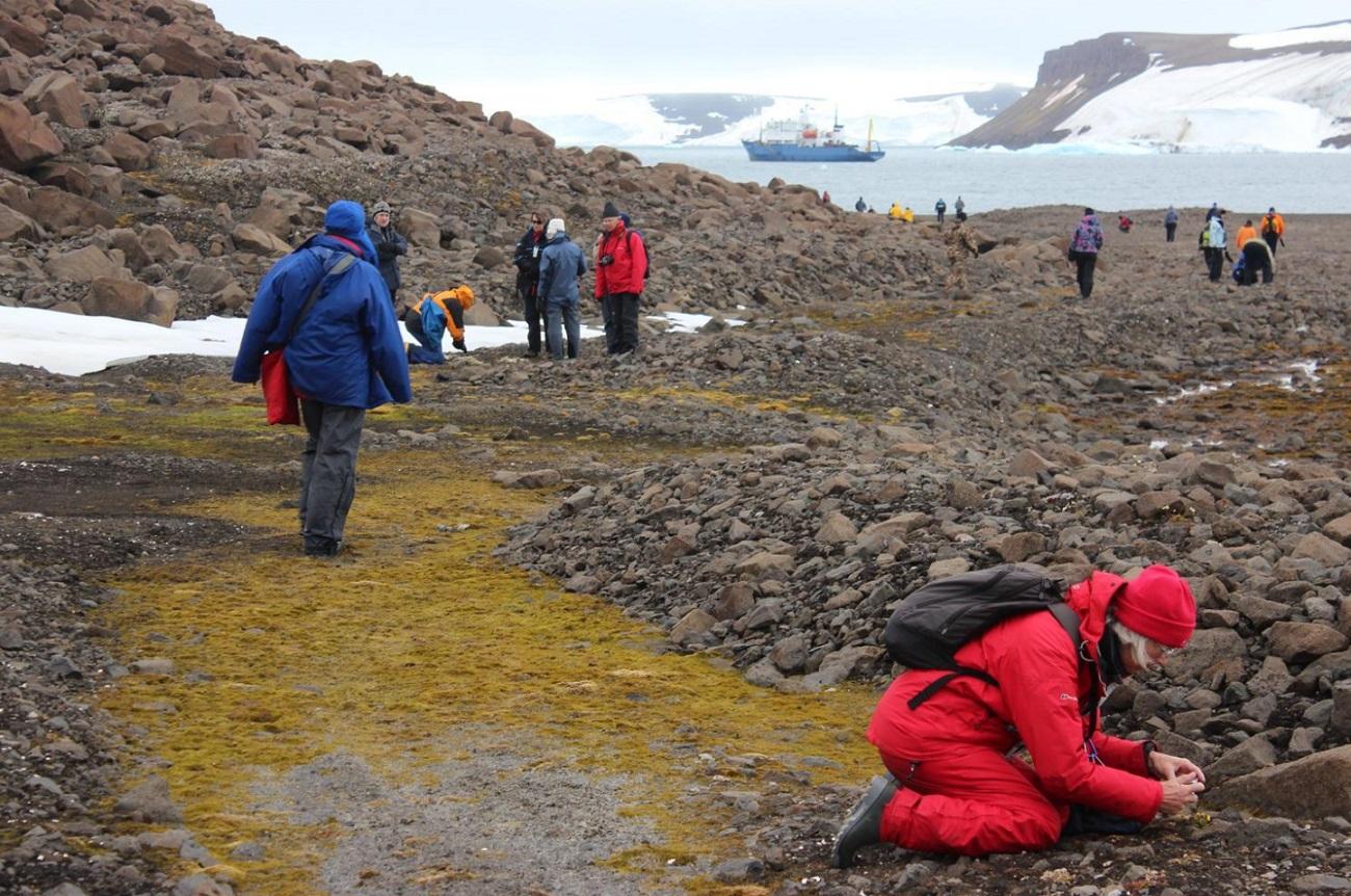 Turisti opazujejo kolonijo ptic na Zemlji Franca Jožefa