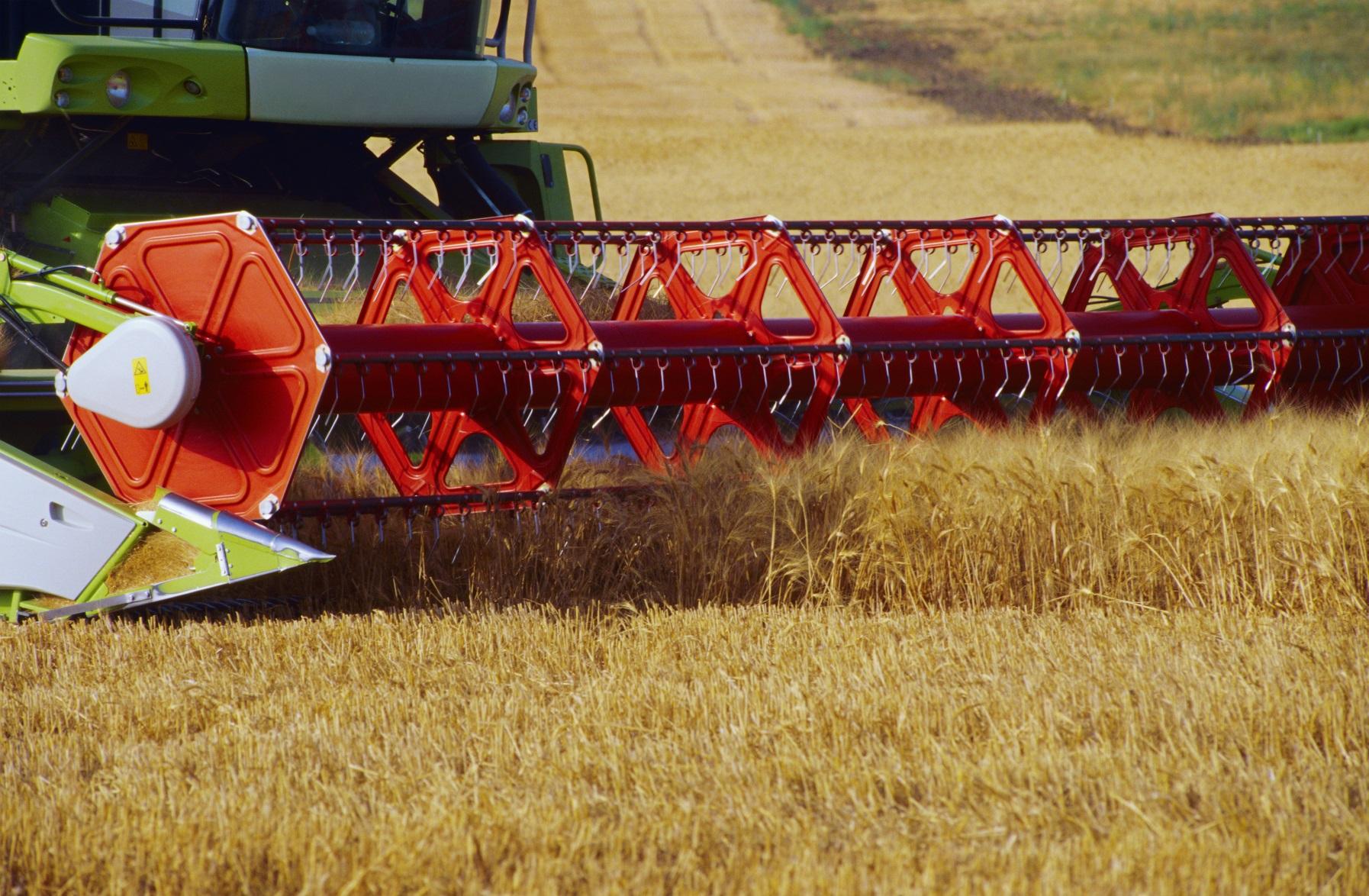 Ekspor gandum Rusia 2016 berjumlah sekitar 25 juta ton.