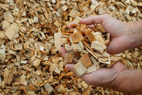 A oggi l'energia generata dalle biomasse ammonta a circa 13 Twh. E dovrebbe raggiungere i 34 Twh nel 2020 (Foto: Reuters)