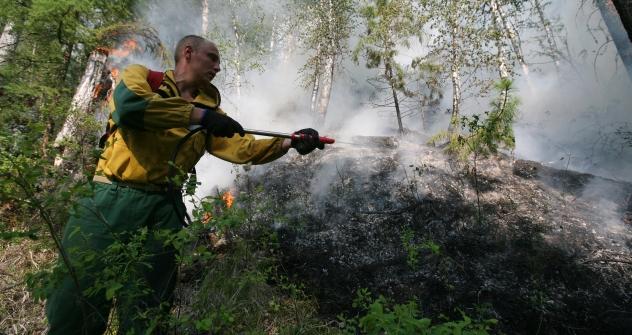 Nel 2010 la Siberia venne colpita da grossi incendi che devastarono vaste aree di territorio: ora il disastro si ripete, e secondo Greenpeace potrebbe rivelarsi ben peggiore rispetto a due anni fa (Foto: Ria Novosti)