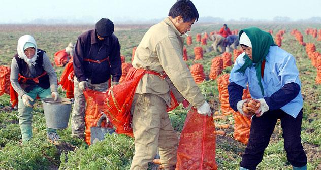 Secondo i dati della Banca Mondiale, dal punto di vista dell'immigrazione di lavoratori stranieri, la Russia occupa attualmente il secondo posto al mondo (Foto: Itar-Tass)