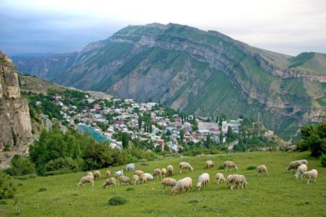 Panorama agricolo del Daghestan (Foto: Ria Novosti)