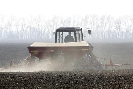 I prezzi più alti per i terreni agricoli in Russia si registrano nel territorio di Krasnodar e nella regione di Rostov (Foto: Itar-Tass)