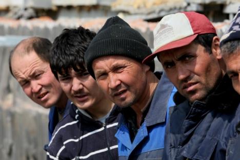 Tra i lavoratori stranieri la ricerca di immigrati clandestini (Foto: RIA Novosti / Vitaly Ankov)