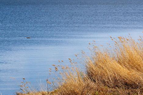 Il lago Chebarkul, a Ovest di Chelyabinsk, dovrebbe custodire il frammento di meteorite caduto dai cieli russi nel febbraio 2013 (Foto: Lori / Legion Media)