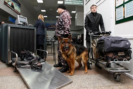 Un pastore tedesco impegnato in controlli alla dogana (Foto: Maksim Bogodvid / RIA Novosti)
