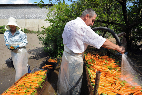 In Russia i prodotti che contengono OGM sono stati formalmente banditi solo in 14 regioni (Foto: Kommersant)