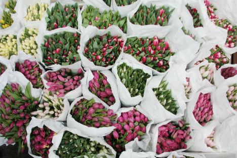 Mazzi di fiori da regalare per la Festa della Donna (Foto: Ria Novosti)