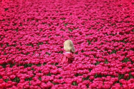 Cascata di fiori per tutte le donne russe (Foto: Legion Media)
