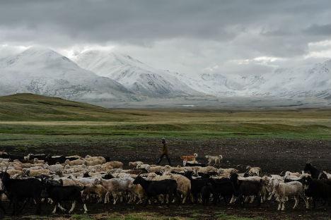 L'altopiano dell'Altaj (Foto: Itar Tass)