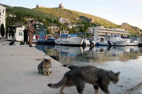 La nuova Crimea e i cambiamenti che stanno interessando la società attuale (Foto: Konstantin Chalabov / Ria Novosti)