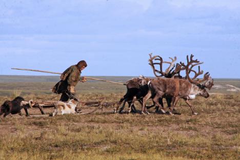 Lo stile di vita dei piccoli popoli indigeni del Nord è condizionato principalmente dalla rigidezza della natura e del clima in cui vivono (Foto: Alberto Caspani)