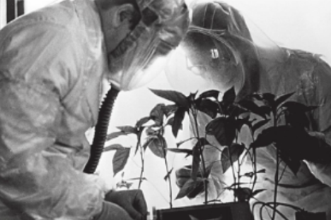 Ricercatori e scienziati al lavoro con le piante nell'istituto Vavilov di San Pietroburgo (Foto: Ria Novosti)