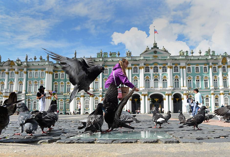 Una ragazza dà da mangiare ai piccioni davanti all'Ermitage di San Pietroburgo (Foto: Getty Images)