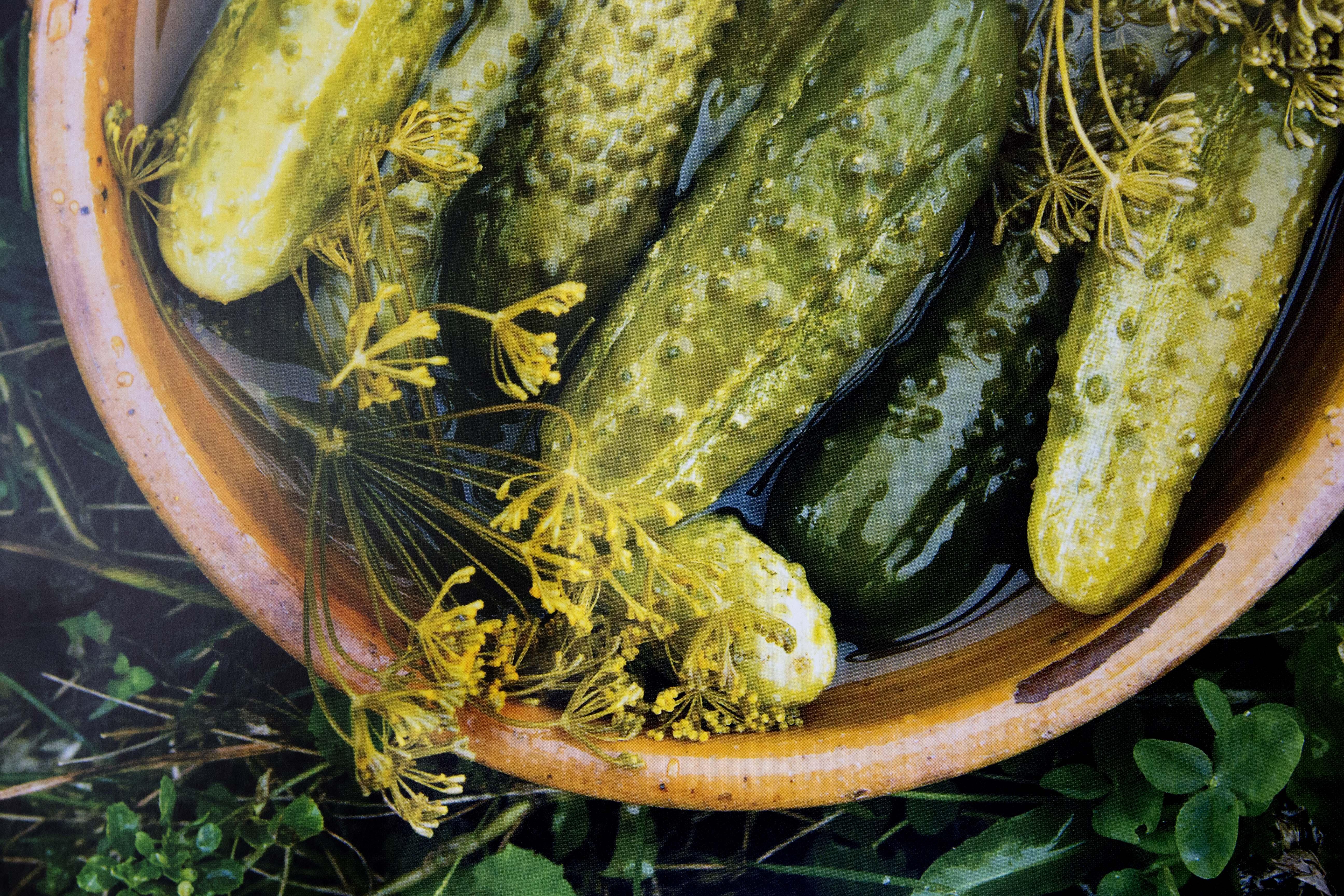"""Cetrioli preparati secondo la tradizione russa (Immagine tratta dal libro """"Cucina russa: regionale e moderna"""" / Russia Expo 2015)"""