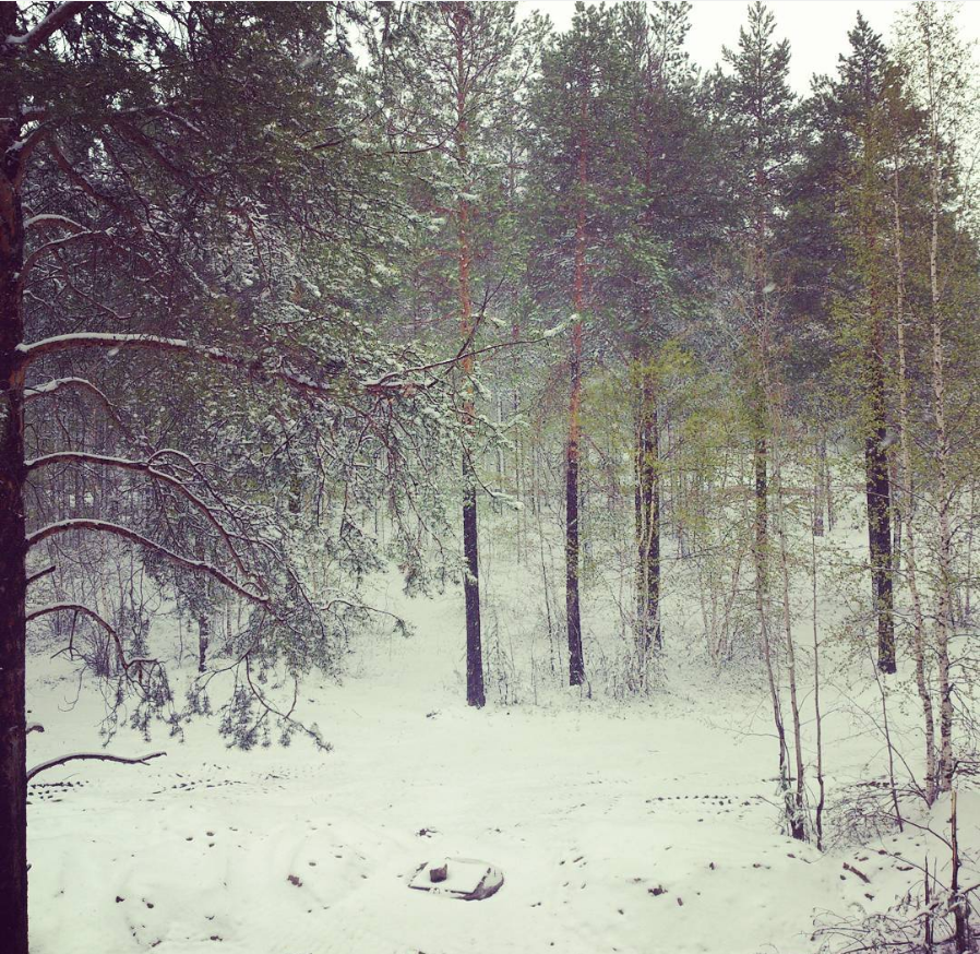 """Un'inaspettata """"nevicata estiva""""."""