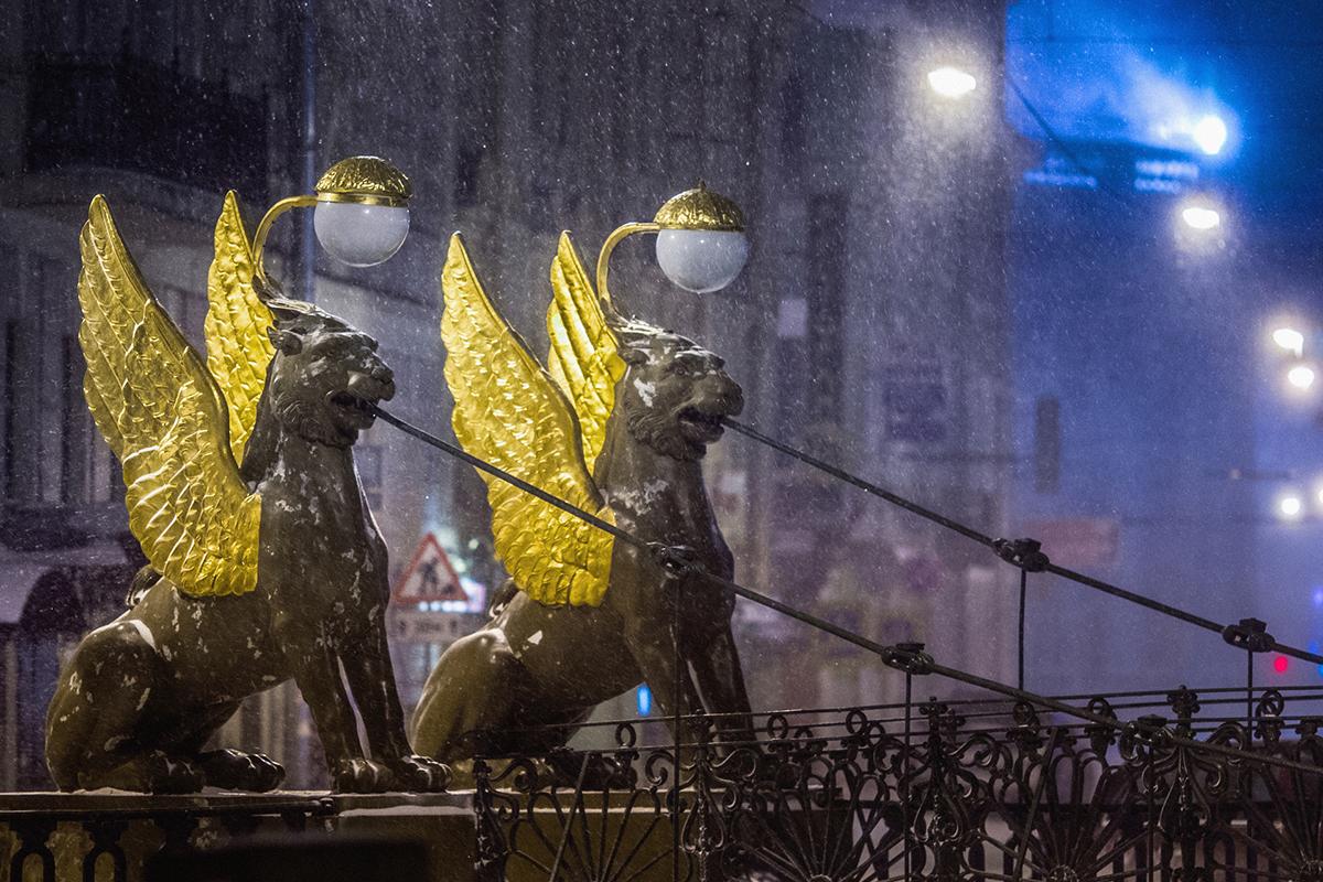 Oltre a collaborare con il governo di Mosca e di San Pietroburgo, Bogomyako ha vinto diversi concorsi fotografici. Nella foto, i leoni del ponte Bankovskij