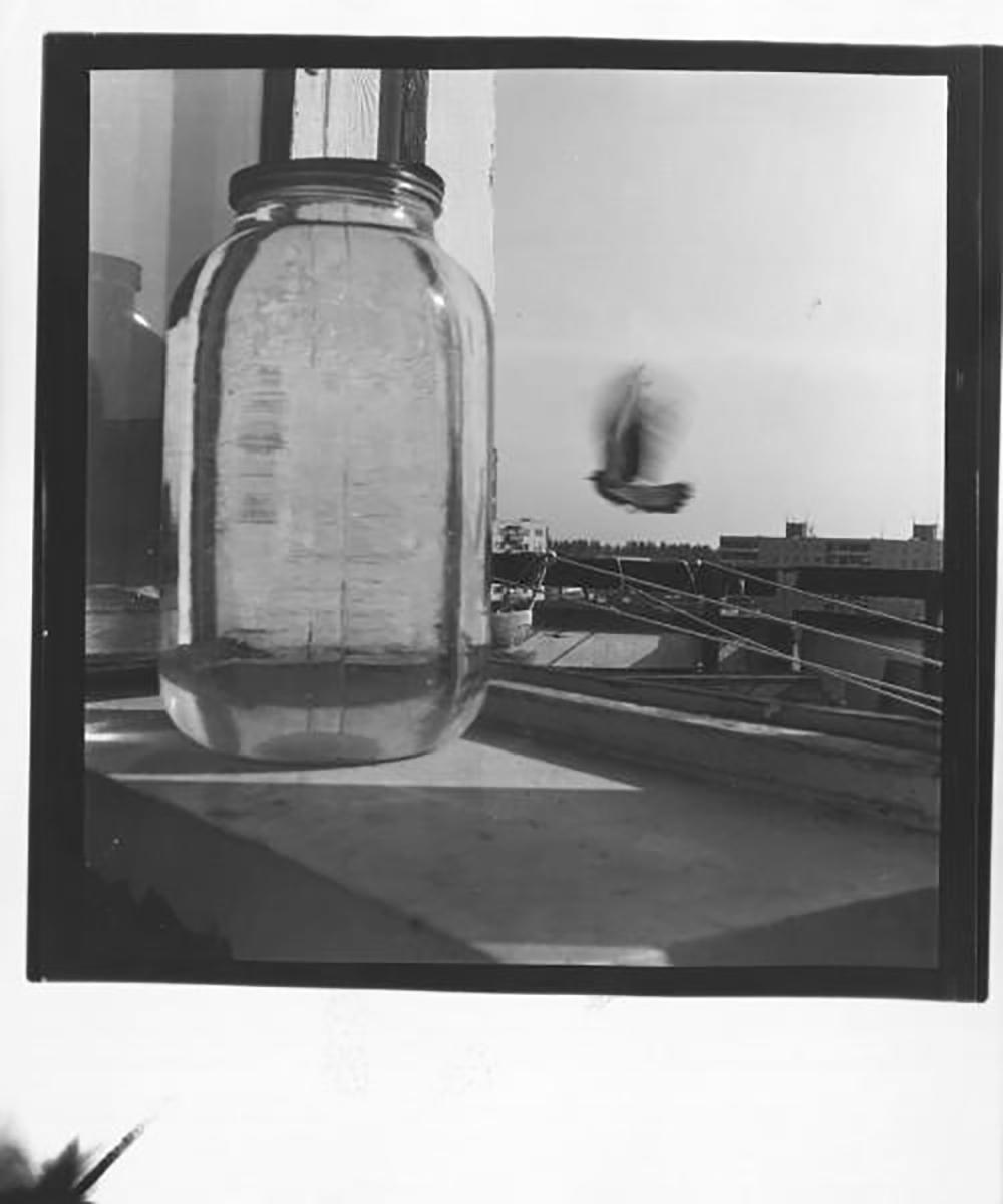 Da allora, dall'inizio degli anni Ottanta, iniziò a realizzare numerose mostre fotografiche sia in Russia sia all'estero / Fotografia № 60 (anni Settanta)