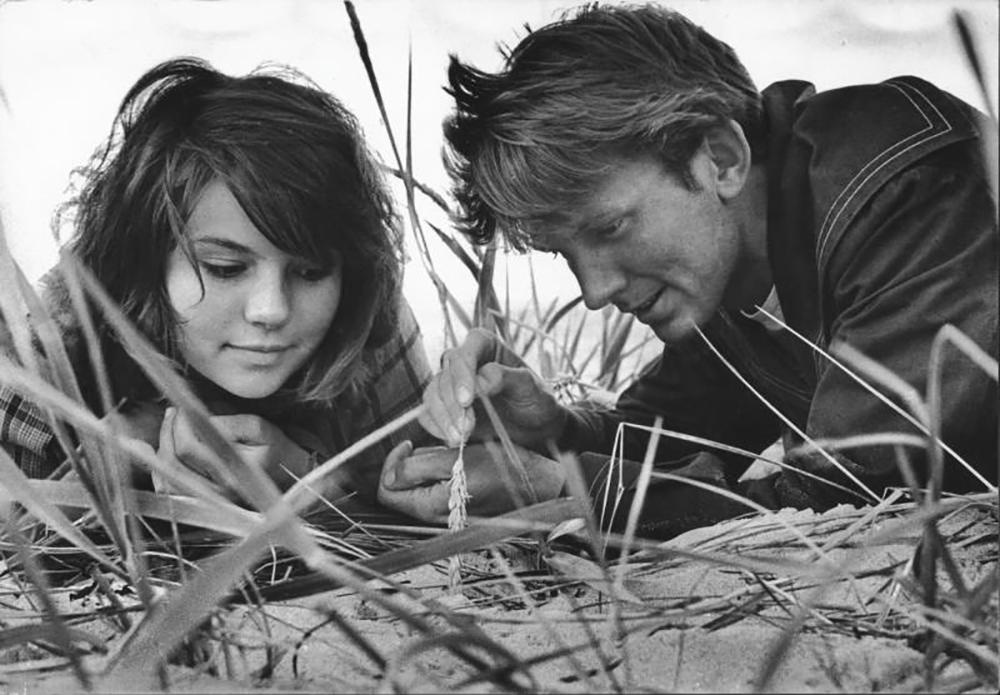 In due su un'isola, 1965