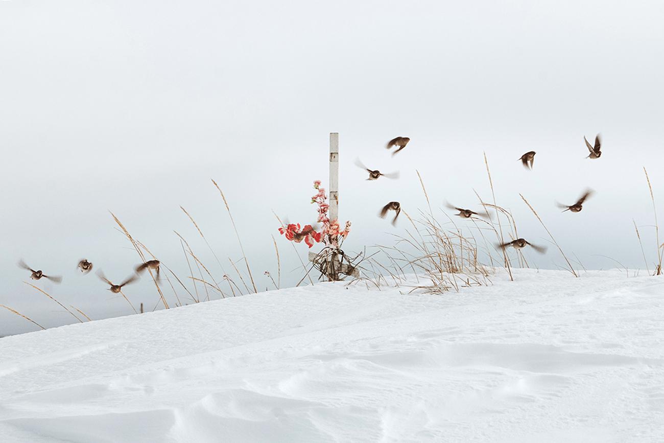 La penisola di Kola e la riva del Mar Bianco: gli scatti di Andrej Semenov a Palazzo Coelli, una delle altre location del festival fotografico umbro insieme al Palazzo del Popolo e alla chiesa di San Giacomo. Una riflessione sull'impatto dell'uomo sulla natura