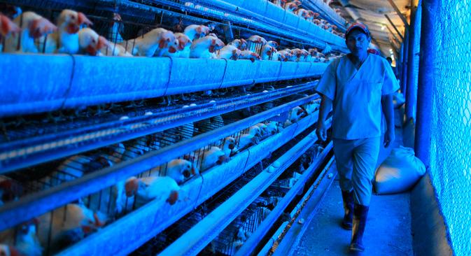 中国政府は感染拡大防止のために、市場を閉鎖し、検疫を行い、鶏肉を流通から外すなどの徹底した措置をとっているものの、感染は収まっていない。=ロイター通信撮影