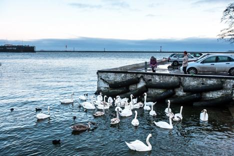 バルト海(写真下)、カリーニングラードを走っているローマン車(写真左上) =マックス・アブデエフ撮影、防波堤(写真左下)=アントン・パニン撮影