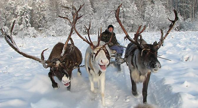 写真提供:www.severolen.ru