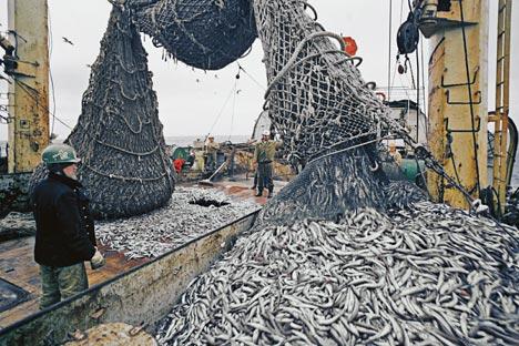 ウラジオストクで4月、「漁業集積」のコンセプトが発表される=ロシア通信撮影
