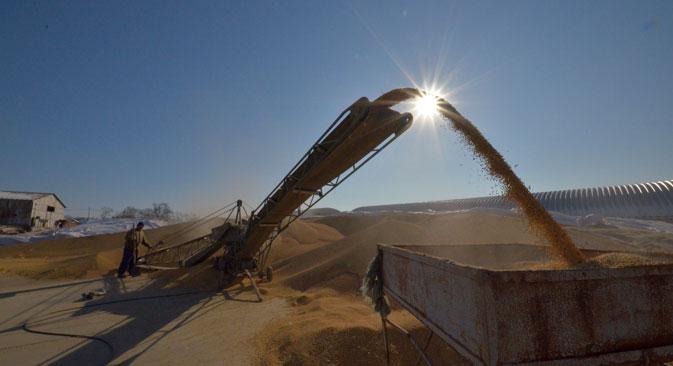 ロシア連邦農業省のイリヤ・シェスタコフはロシア産穀物の輸出を含む、日本との貿易拡大への期待、投資受け入れおよび日本のパートナーとのプロジェクト実現への用意を表明した。=ロイター通信撮影