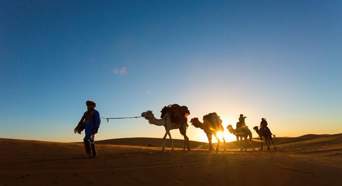 トリ・ポトカ村の競馬場でラクダのレース、写真提供:Shutterstock/Legion-Media