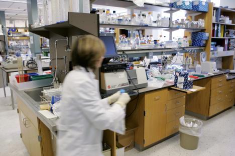 Според резултатите на истражувањето на новосибирските научници, препаратот против големите сипаници ќе биде готов до 2020 година. Извор: АР.
