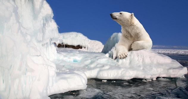 Русија је спремна за експлоатацију неизмерних богатстава скривених испод арктичког леда. Извор: Lori / Legion Media.