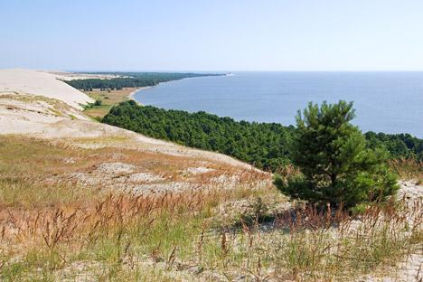 Куршска превлака на обали Балтика: музеј природних зона. Извор: ИТАР-ТАСС.