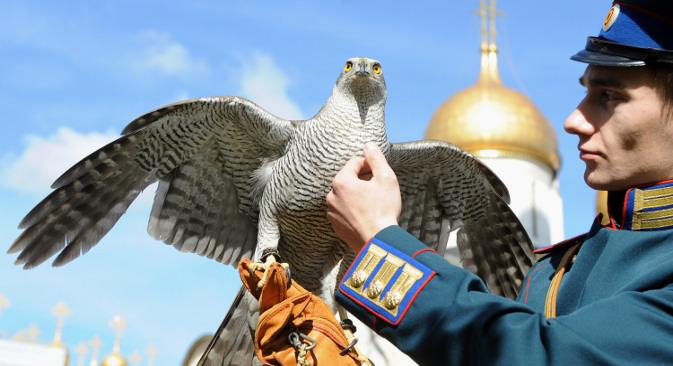 Кремљовскиот соколар и неговата птица имаат задача да ги чуваат златните куполи на Московскиот кремљ (во позадината) од врани. Извор: ИТАР-ТАСС.