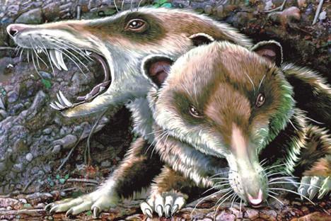 Хронопи су необични ликови из циклуса прича аргентинског писца Хулија Кортасара. Хронопи су живели у раном периоду креде, пре око 100 милиона година.