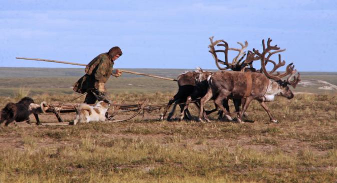 Ненци насељавају велико подручје на обали Северног леденог океана и Сибира. Фотографија: Alberto Caspani.