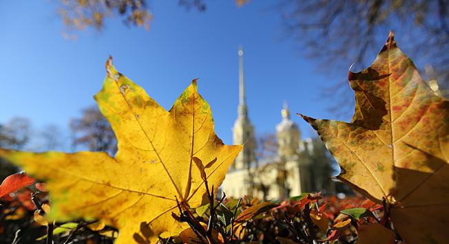 Прелестите на есенна обиколка на руската северна столица.