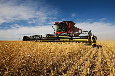 Além de grãos, Rússia quer aumentar exportação de fertilizantes